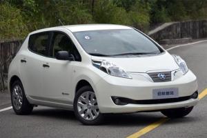 Auto-sales-statistics-China-Venucia_Morning_Wind-EV