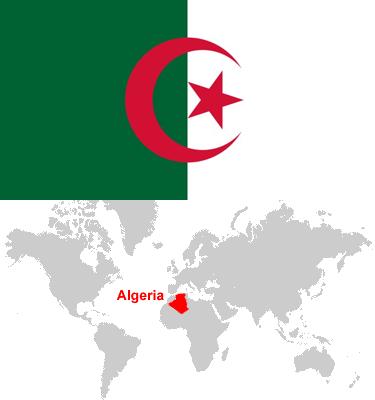 Algeria-car-sales-statistics