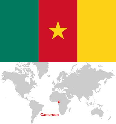 Cameroon-car-sales-statistics