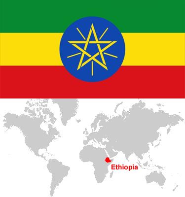 Ethiopia-car-sales-statistics