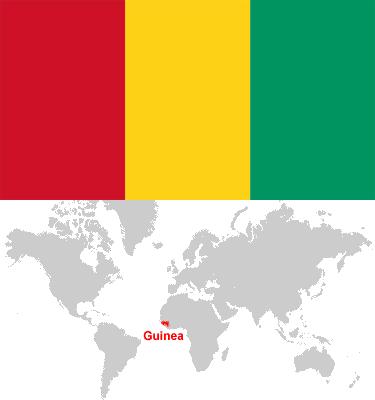 Guinea-car-sales-statistics