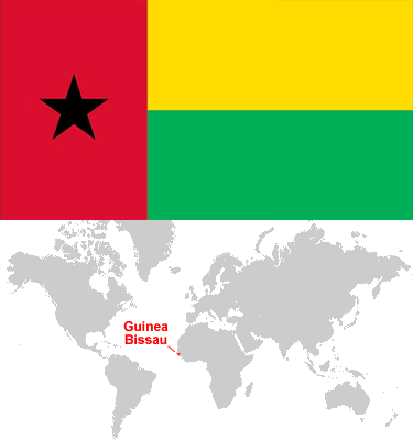 Guinea_Bissau-car-sales-statistics