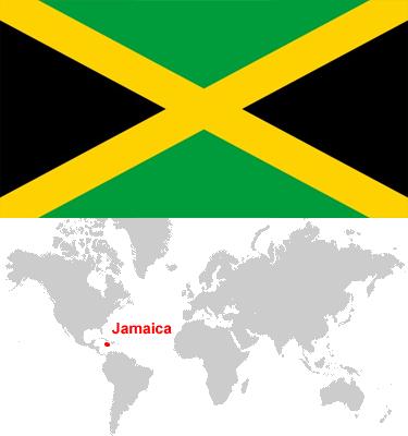 Jamaica-car-sales-statistics