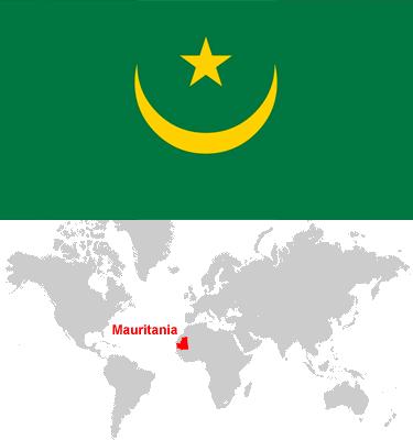 Mauritania-car-sales-statistics