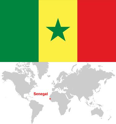 Senegal-car-sales-statistics