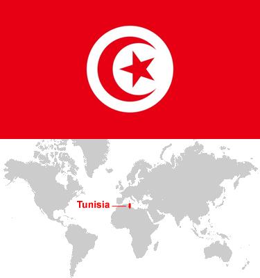Tunisia-car-sales-statistics