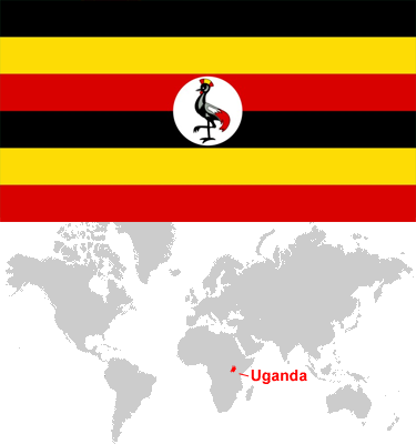 Uganda-car-sales-statistics