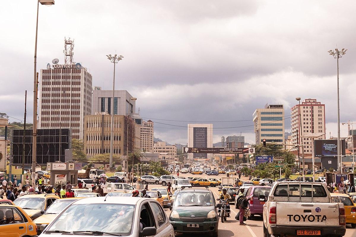Cameroon Car Sales Data
