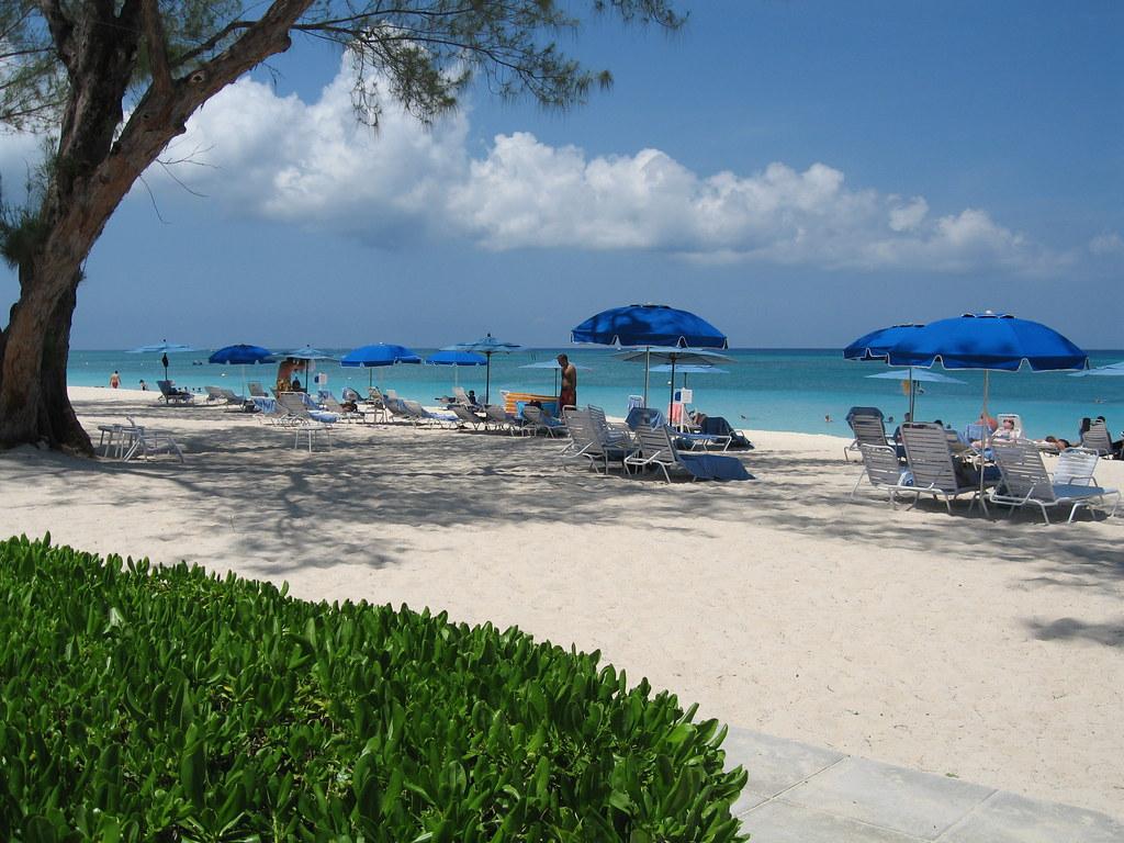 Grand Cayman Car Sales Data