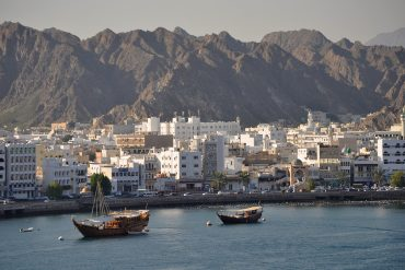 Oman Car Sales Data