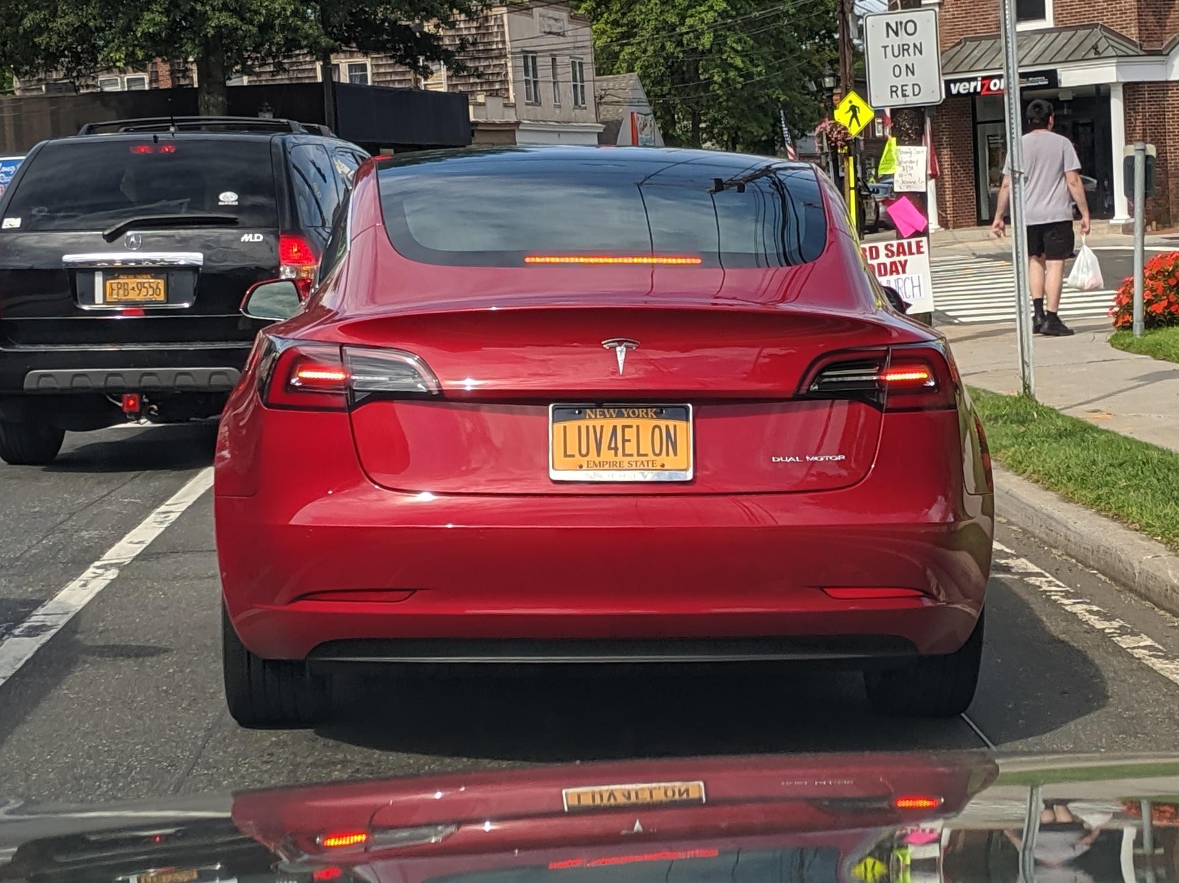 Love For Elon Vanity Plate